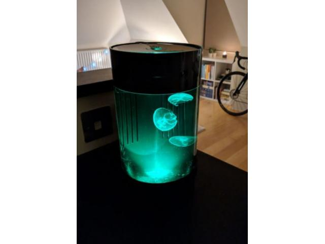 Tubové akvárium C8 Tube aquariums for jellyfish