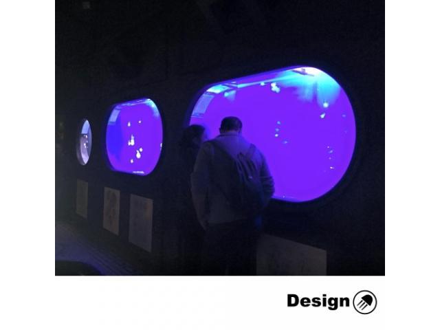 Kreisel Oval Jellyfish Aquarium – 2000 l (can be inbuilt) Jellyfish aquariums
